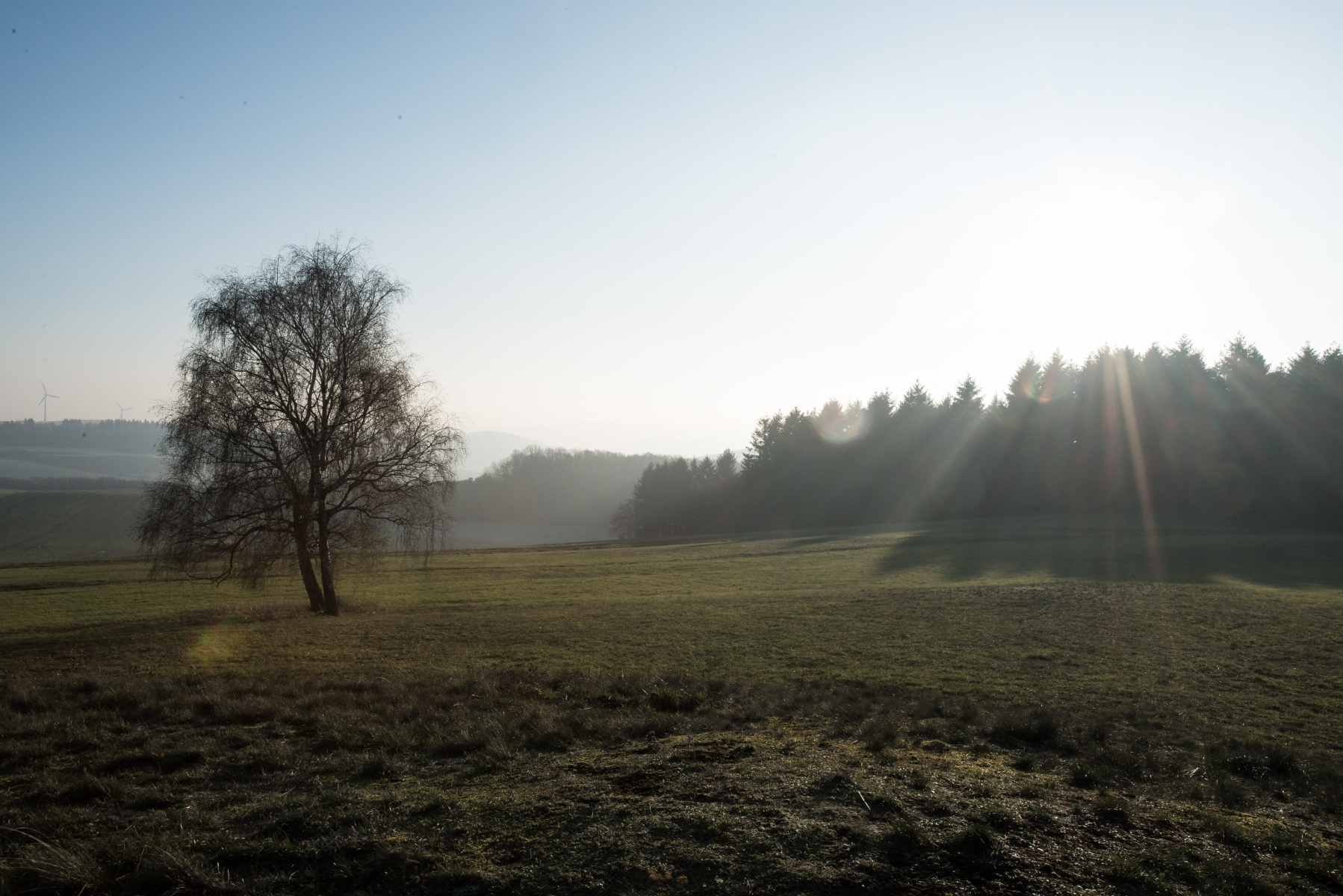 2019-1205-Morbach_Sterzelberg-5