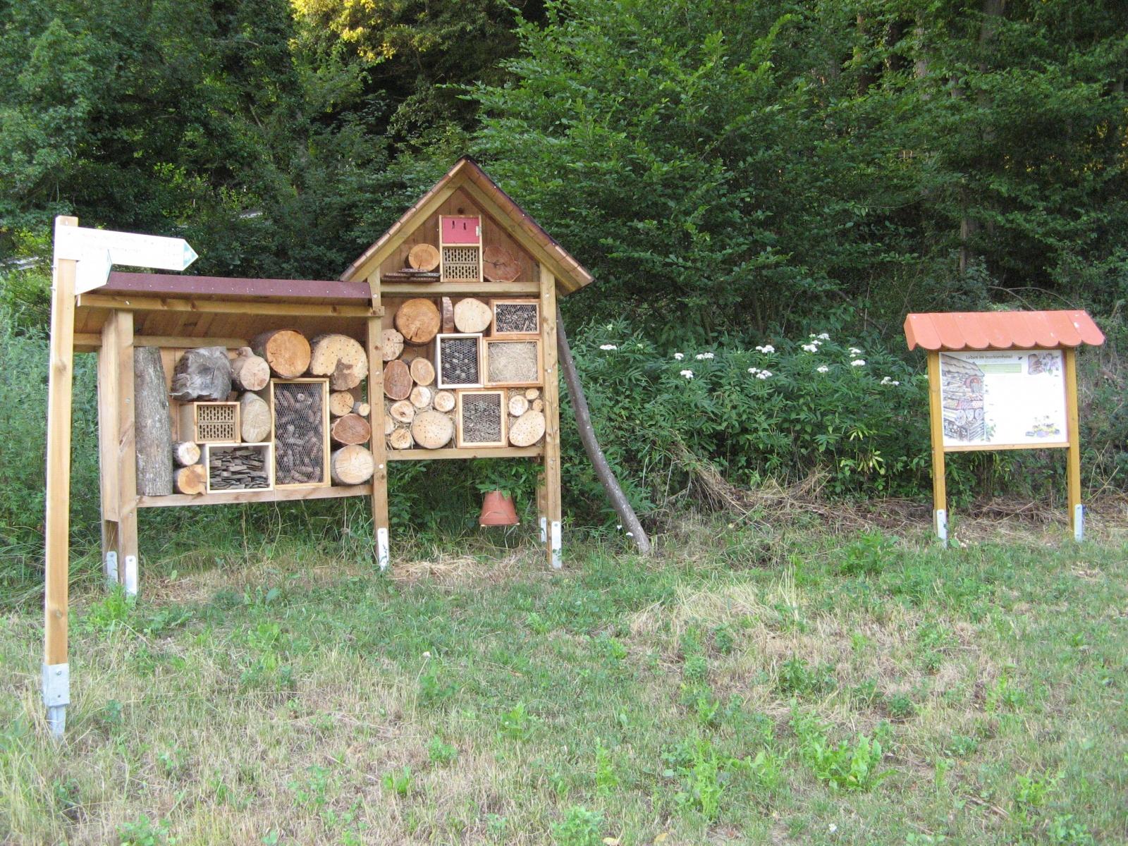 60_Insektenhotel_Wiese
