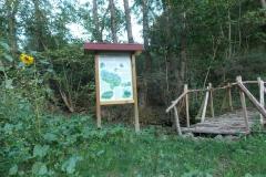 50-Brücke-Naturwiese