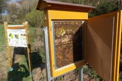 62-Bienenschau